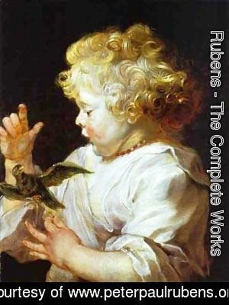 Rubens - Infant With A Bird 1624-1625