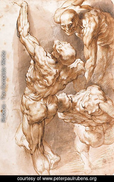Rubens - Anatomical studies Three nudes
