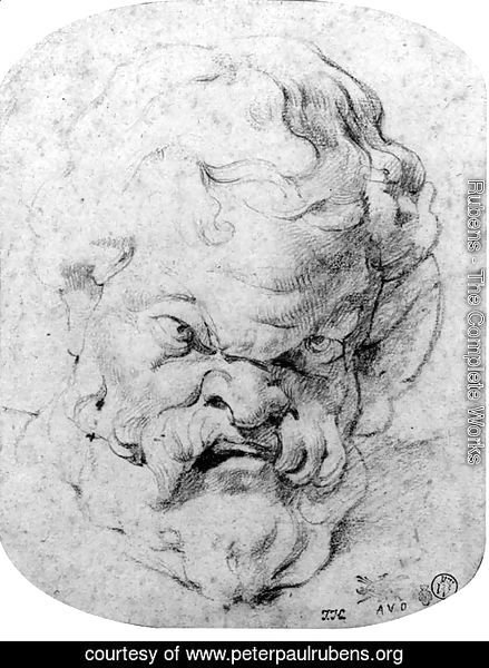 The head of Silenus, after the antique