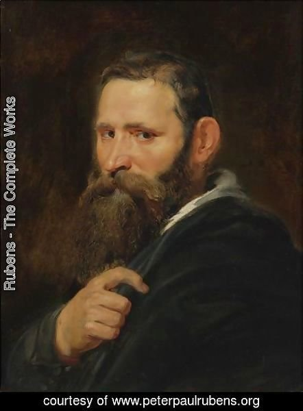 Rubens - Head Of A Bearded Man