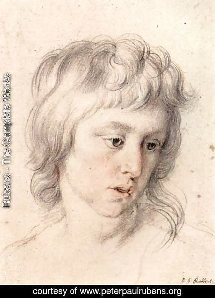 Rubens - Portrait of boy
