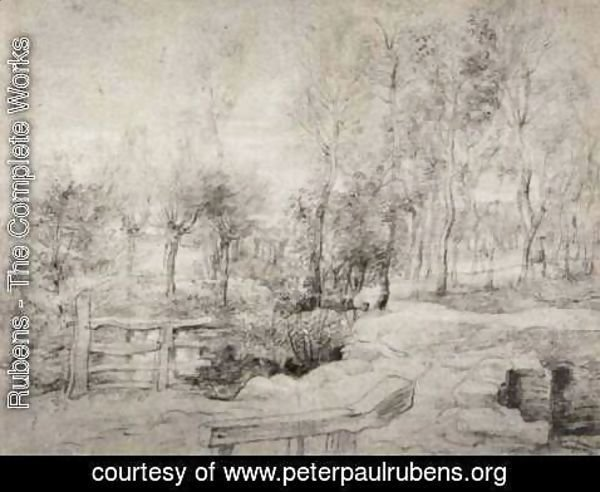 Rubens - Landscape with a trees