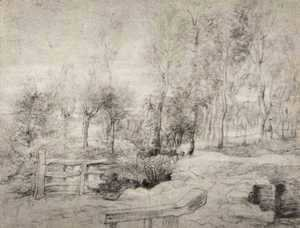 Landscape with a trees
