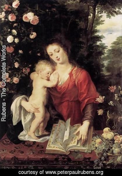 Rubens - Virgin  and  Child 3