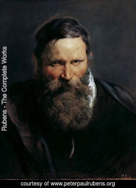 Rubens - Head of a bearded man 2
